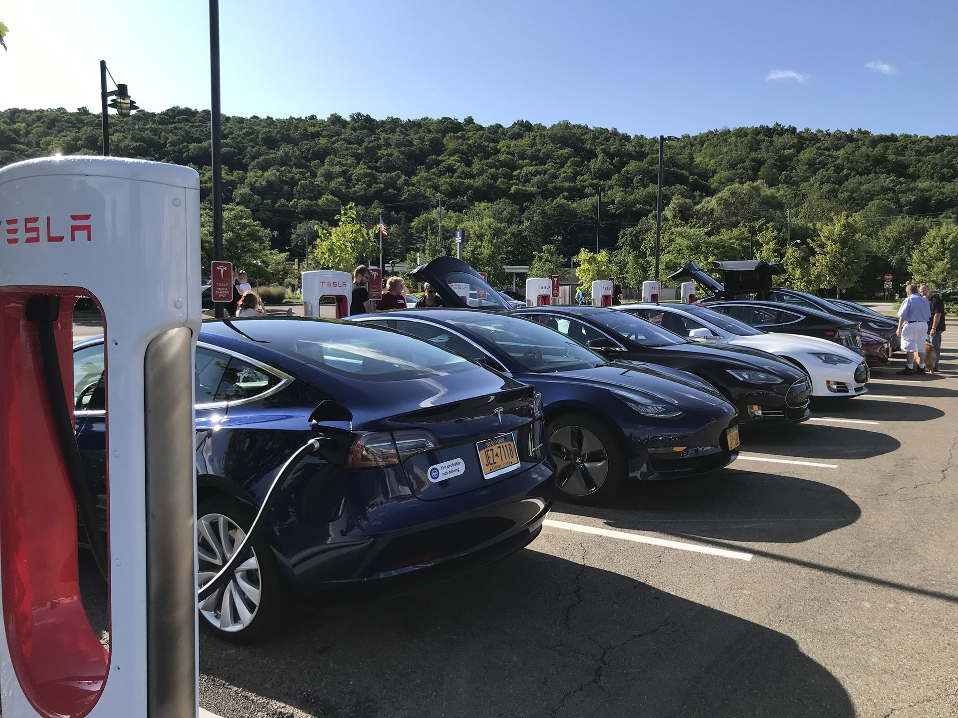 Tesla Owners Club New York State - Blog